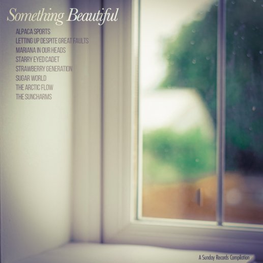 SomethingBeatiful